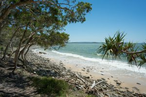 Isolated Beach in Noosa NP