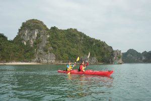 One Night Cruise in Halong Bay