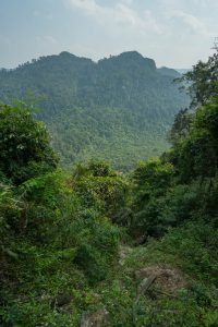 Green Everywhere on Tu Lan Expedition
