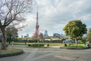 Tokyo Tower from Shiba Park in Tokyo